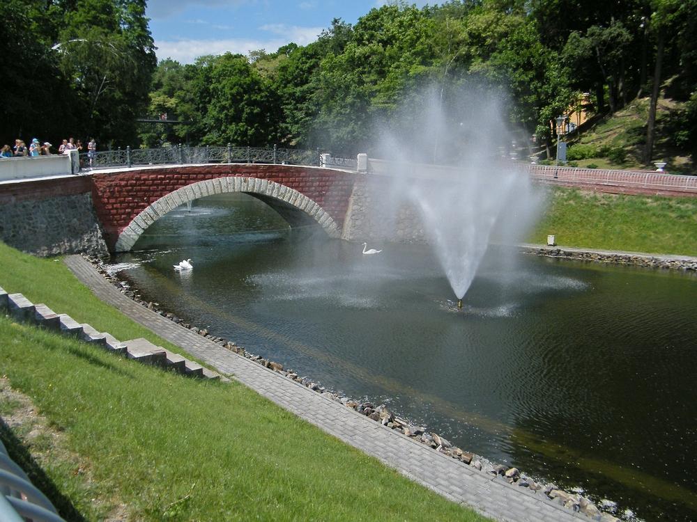 парк лебеди