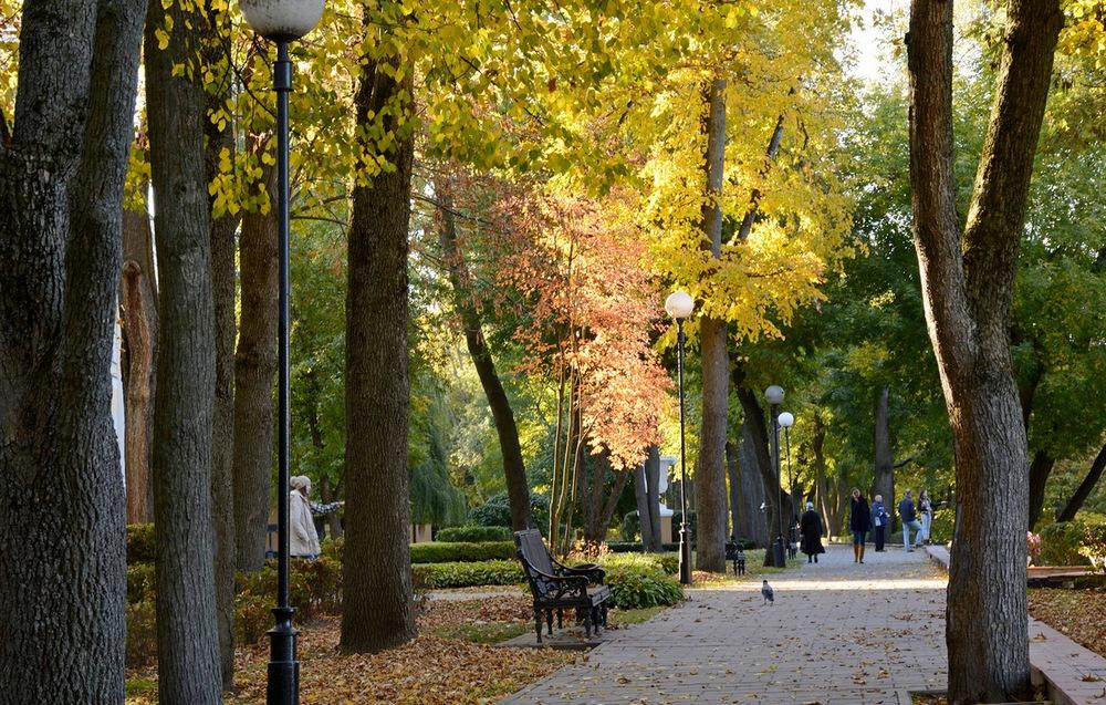парк природа гомель