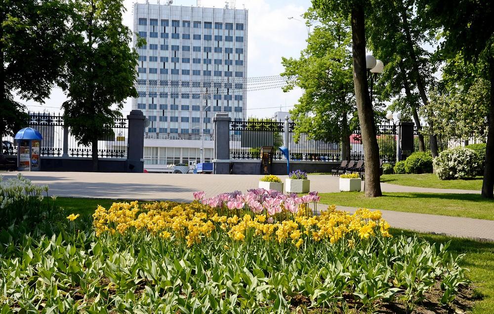 парк цветы